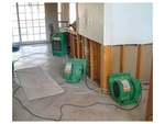 Tanin Carpet, Sofa Cleaning, Water Damage Restoration & Flooded Basement Cleanup, Mold Removal in Willowbrook, IL, photo #5
