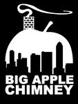Big Apple Chimney LLC in Brooklyn, NY, photo #1