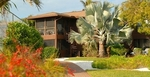 Blind Pass Condominium Rentals in Sanibel, FL, photo #2