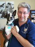 Otay Pet Vets in Chula Vista, CA, photo #2