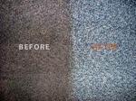 Oasis Carpet & Upholstery in Clarkston, MI, photo #1