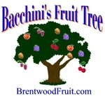 Bacchini's Fruit Tree in Brentwood, CA, photo #2