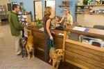 Northwest Neighborhood Veterinary Hospital in Portland, OR, photo #3