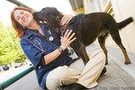 Northwest Neighborhood Veterinary Hospital in Portland, OR, photo #7
