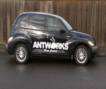 Antworks Pest Control   Portland, OR.   Vancouver, WA.   Exterminator in Portland, OR, photo #3