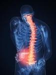 The Spine and Orthopedic Center in Santa Barbara, CA, photo #3