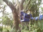 Superior Ideas Inc. in Debary, FL, photo #2