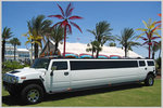 Tracey Nicolls Limousine and Hummer Rental in Kenner in Kenner, LA, photo #1