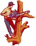 Beaver Creek Tree Care LLC in Dayton, OH, photo #1