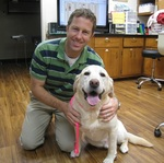 Chattahoochee Animal Clinic in Roswell, GA, photo #1
