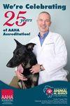 North Bay Animal Hospital in Tampa, FL, photo #6