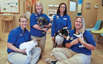 Temple Terrace Animal Hospital in Tampa, FL, photo #2