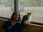 Hobson Valley Animal Clinic in Woodridge, IL, photo #9