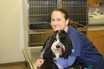 Hobson Valley Animal Clinic in Woodridge, IL, photo #10