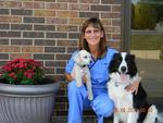 Hobson Valley Animal Clinic in Woodridge, IL, photo #13