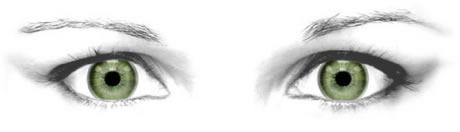 Realistic-animated-eyes-in-adobe-flash