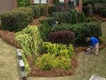 Garden's Edge Landscaping in Kennesaw, GA, photo #5