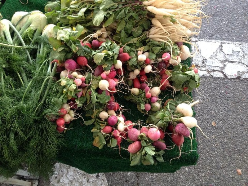 Crossings_-_heirloom_radishes_selected_by_chef_lalo_sanchez_from_the_farmers_market