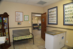 Animal Kingdom Pet Hospital in League City, TX, photo #1