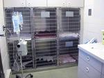 Animal Health Clinic in Fargo, ND, photo #12