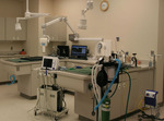 Animal Health Clinic in Fargo, ND, photo #13