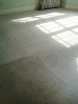 Carpet Cleaning Charlotte Inc. in Charlotte, NC, photo #3