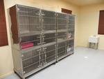 Cornerstone Animal Hospital in North Richland Hills, TX, photo #7
