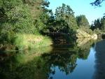 L C. in Fall Creek, OR
