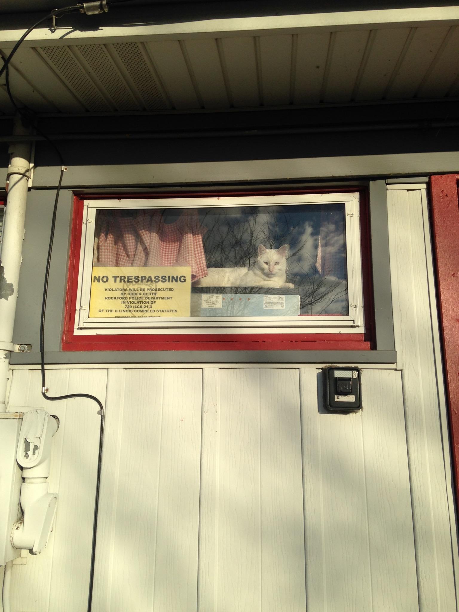 Holm, Patracia J, DVM - Auburn Animal Clinic Inc in Rockford, IL, photo #4
