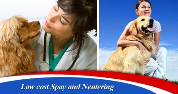 ABC Veterinary Hospital - Uptown in San Diego, CA, photo #22