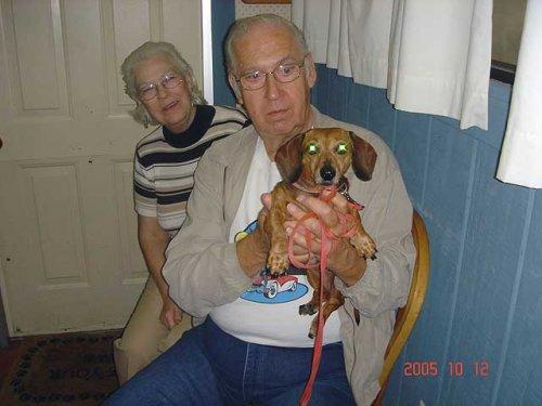 Woodside Animal Clinic in Royal Oak, MI, photo #8