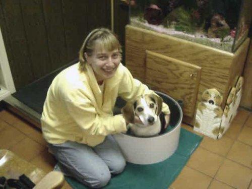 Woodside Animal Clinic in Royal Oak, MI, photo #9