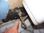 Southern Home Inspection Services in Atlanta, GA, photo #20