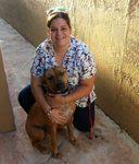 Doral Centre Animal Hospital in Doral, FL, photo #41