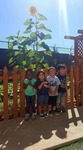 The Vine Childcare Center in San Diego, CA, photo #43