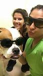 DPC Veterinary Hospital in Davie, FL, photo #47