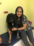 DPC Veterinary Hospital in Davie, FL, photo #48