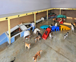 Cagefree K9 Camp in Los Angeles, CA, photo #1
