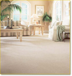 Valley Carpet Cleaning Professionals-Porter Ranch in Northridge, CA, photo #2