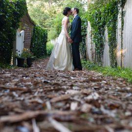 Bride And Groom On Wood Path