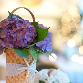 Hydrangeas In Basket