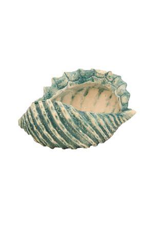 Conchiglia posacenere Sea Gull Capri | 20000025 | CONCHIGLIA266TU266 TURCHESE