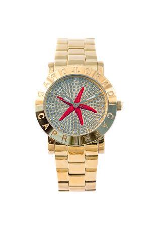 Starfish watch L
