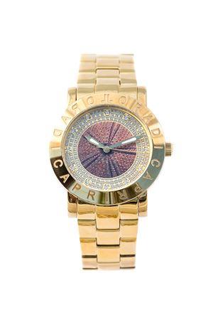 Sea urchin watch L