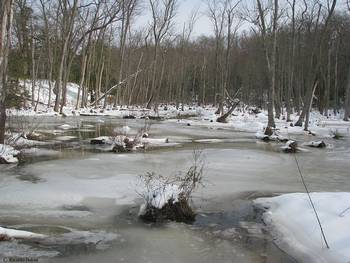 MN Winter Photo courtesy Virgnia State Parks Staff