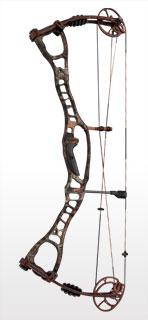 Newbury Archery