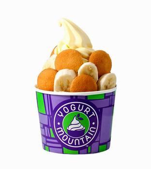 Yogurt Mountain Treat - mmmmm