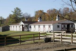Southwinds Stable