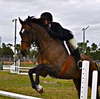 Horseman's Association