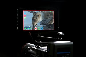 Atomos Presents Shogun at IBC in Amsterdam